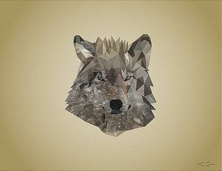Poly Wolf by Tim Ford