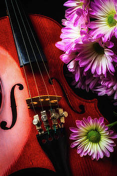 Poms And Violin by Garry Gay