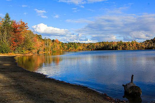 Pond at Endicott by Jennifer Ansier