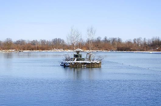 Pond Isle by Srdjan Fesovic