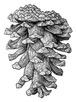 Ponderosa Pinecone by Kirsten Wahlquist