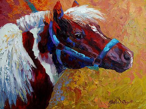 Marion Rose - Pony Boy