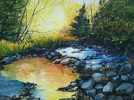 Pool of Gold by Lynn Babineau