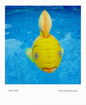 TONY GRIDER - Pool Toy Polaroid Snapshot Transfer