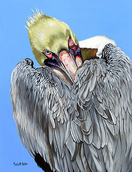 Popeye The Pelican by Phyllis Beiser