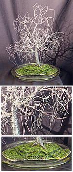 Poplar in Round Glass by Sal Villano