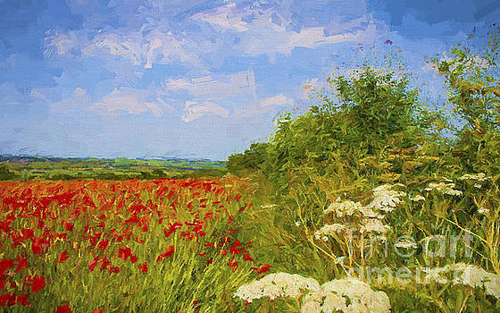 Poppies Across the Valley by ShabbyChic fine art Photography