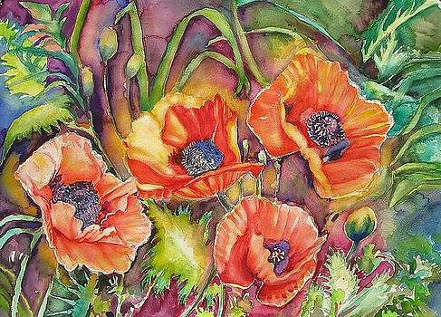 Poppies Aglow  by June Conte  Pryor