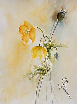 Poppies And Bud by Lucia Del