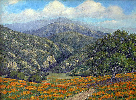 Poppies by Marv Anderson