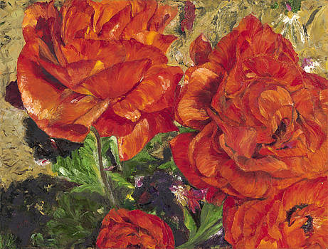 Poppies on Fire by Maria Gibbs