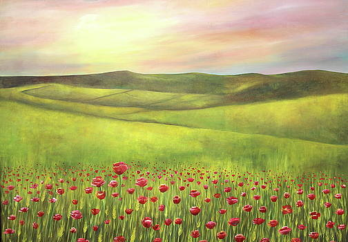 Poppies Sunset  by Gabriela Valencia