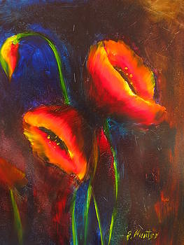 Poppies together by Jeff Hunter