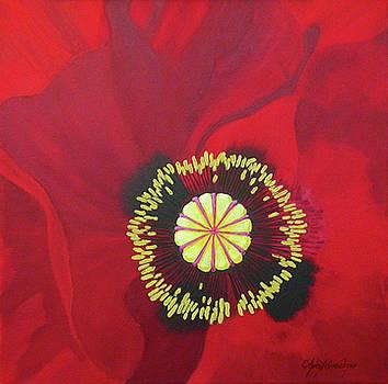 Poppy by Chris Graebner