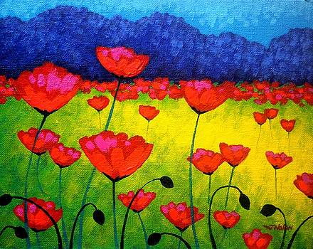 Poppy Cluster by John  Nolan