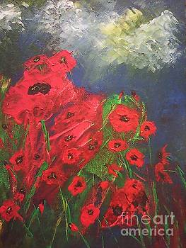Poppy Field by Ginny Youngblood