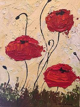 Poppy love by Jan Holman