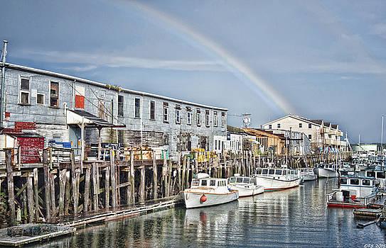 Port Rainbow by Richard Bean