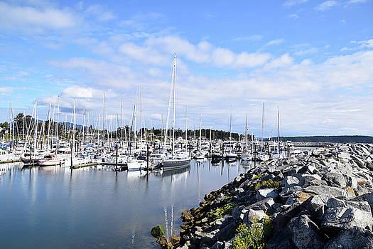 Port Sidney Marina British Columbia Vancouver Island Canada by Barbara Snyder