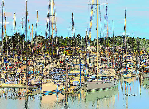 Port Sidney Marina British Columbia Vancouver Island Canada Drawing by Barbara Snyder