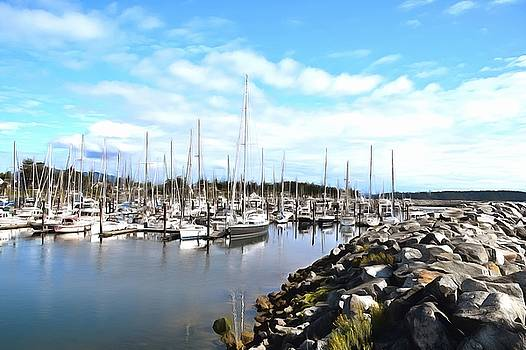 Port Sidney Marina British Columbia Vancouver Island Canada Painting by Barbara Snyder