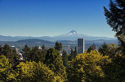 Portland and Mt Hood - Washington Park - Portland - Oregon by Bruce Friedman