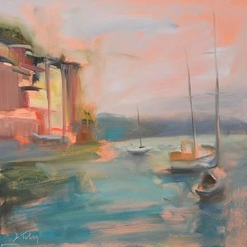 Portofino from the Sea by Donna Tuten