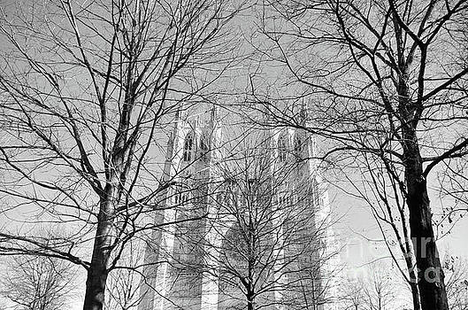 Portrait Of A Cathedral by John S
