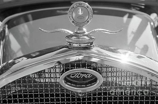 Portrait Of A Classic Ford by John S