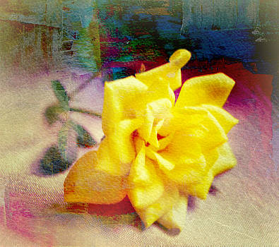 Portrait of A Yellow Rose by Kathy Bucari