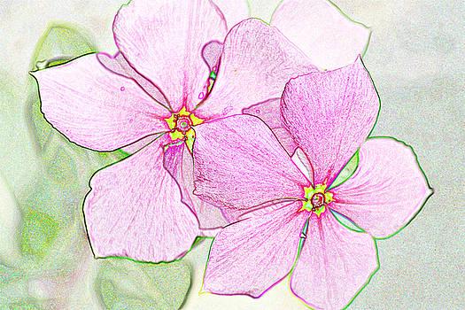KayeCee Spain - Postal Pink- Fine Art