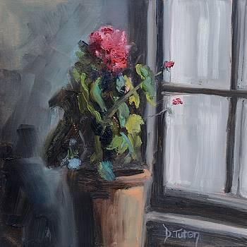Potted Geranium in Windowsill by Donna Tuten