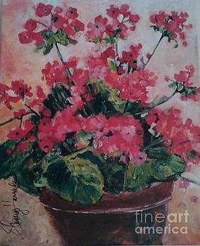 Potted Geraniums by Sherry Harradence