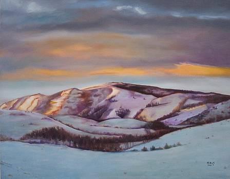 Powder Mountain by Marlene Book