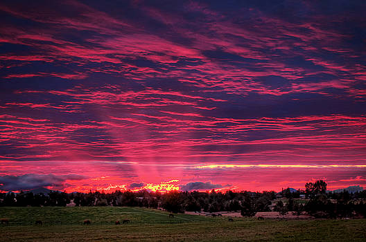 Powell Butte Oregon Sunset by Tyra OBryant