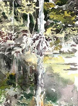 Praire Oaks by Mindy Newman