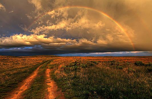 Prairie Roads Lead to Gold by Chris  Allington