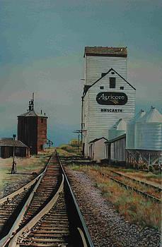 Prairie Sentinel by Lois Hogg