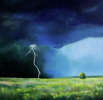 Prairie Storm by Toni Grote