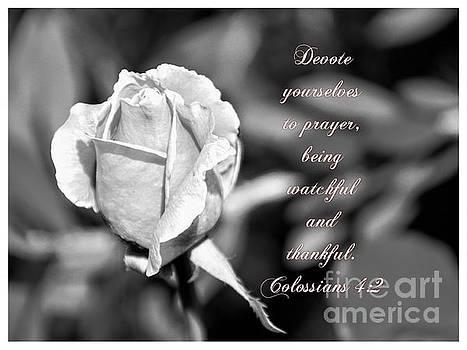 Prayer by Debby Pueschel