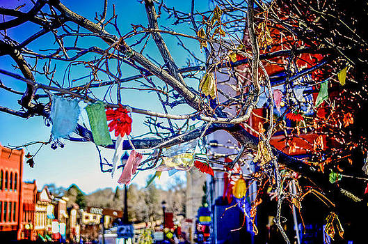 Prayer Flags in the City by Sharon Wunder Photography
