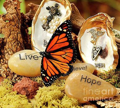 Prayers for Butterfly Migration  by Luana K Perez