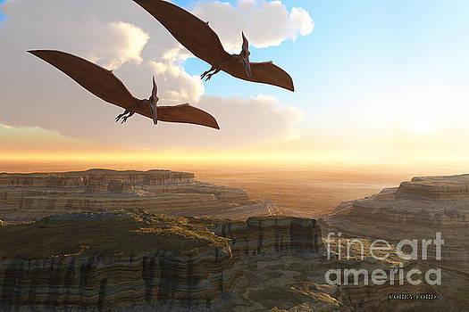 Corey Ford - Prehistoric Canyon