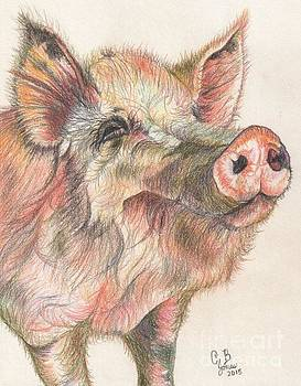 Pretty ImPORKant Pig by Chris Bajon Jones