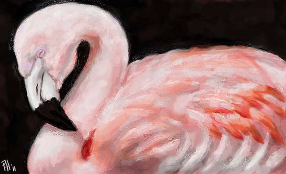 Pretty In Pink by Peggy Hickey