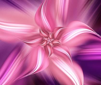 Anastasiya Malakhova - Pretty Pink Flower