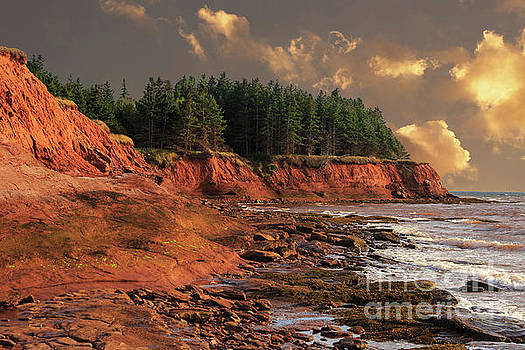 Prince Edward Island Shoreline by Verena Matthew