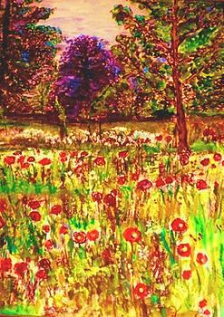 Prince of Wales Poppy Fields by Helena Bebirian