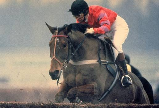 Princess Anne Riding Cnoc Na Cuille at Kempten Park by Travel Pics