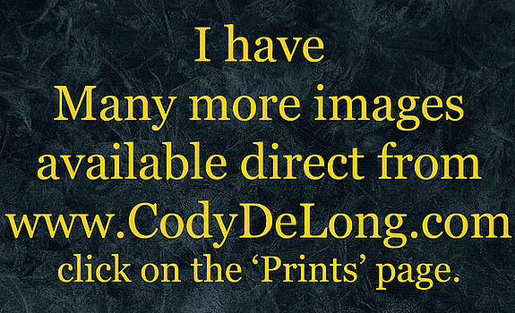 Prints by Cody DeLong